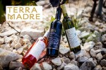 Terra Madre Winery